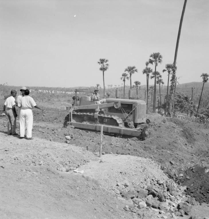Aarey 1952